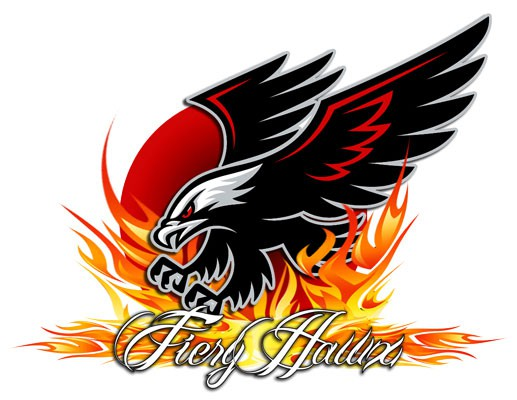 Fiery Hawx Cricket Team Logo